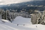 Recreation Winter / Skiers going downhill
